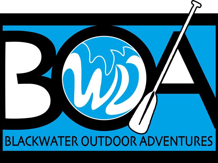 boa-logo-980x560